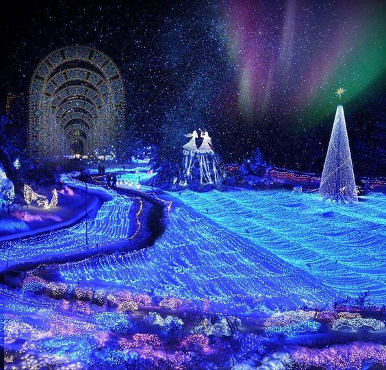 【関西のイルミネーション5選】冬はイルミネーションを楽しもう!のサムネイル画像