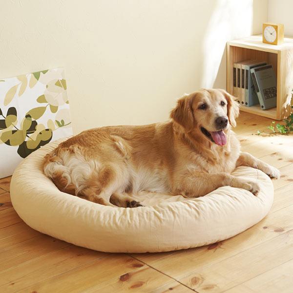 お家の中で過ごす愛犬におすすめ!快適な犬用ベッドの紹介!のサムネイル画像